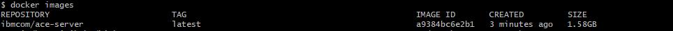 docker image ace-server